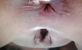 Brown poop dropped in close up